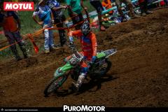 PuroMotor Motocross-305