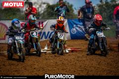 PuroMotor Motocross-335