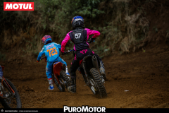 PuroMotor Motocross-718