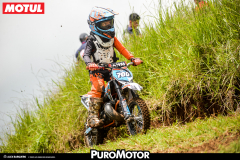 MX7maFechaPUROMOTOR2018-118