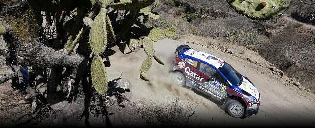 Matt_Ostberg_TC5_WRC_Mexico