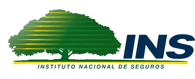 Seguro de Obligatorio de Automoviles INS